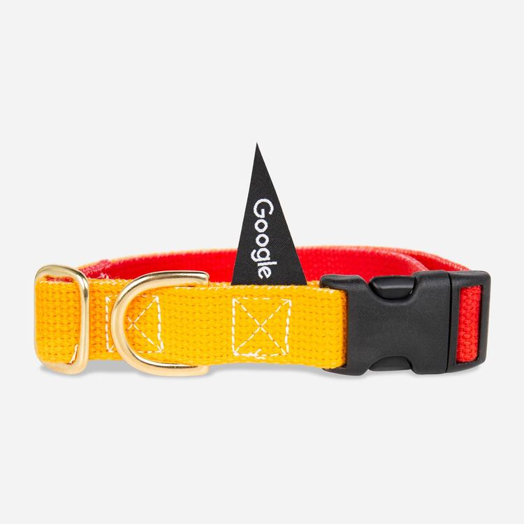 Review Of Google Large Pet Collar (Red/Yellow) $35.00