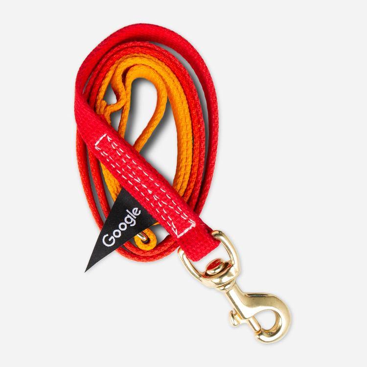 Review Of Google Medium Pet Leash (Red/Yellow) $35.00